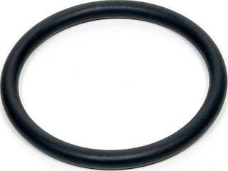 O-ring 25.0
