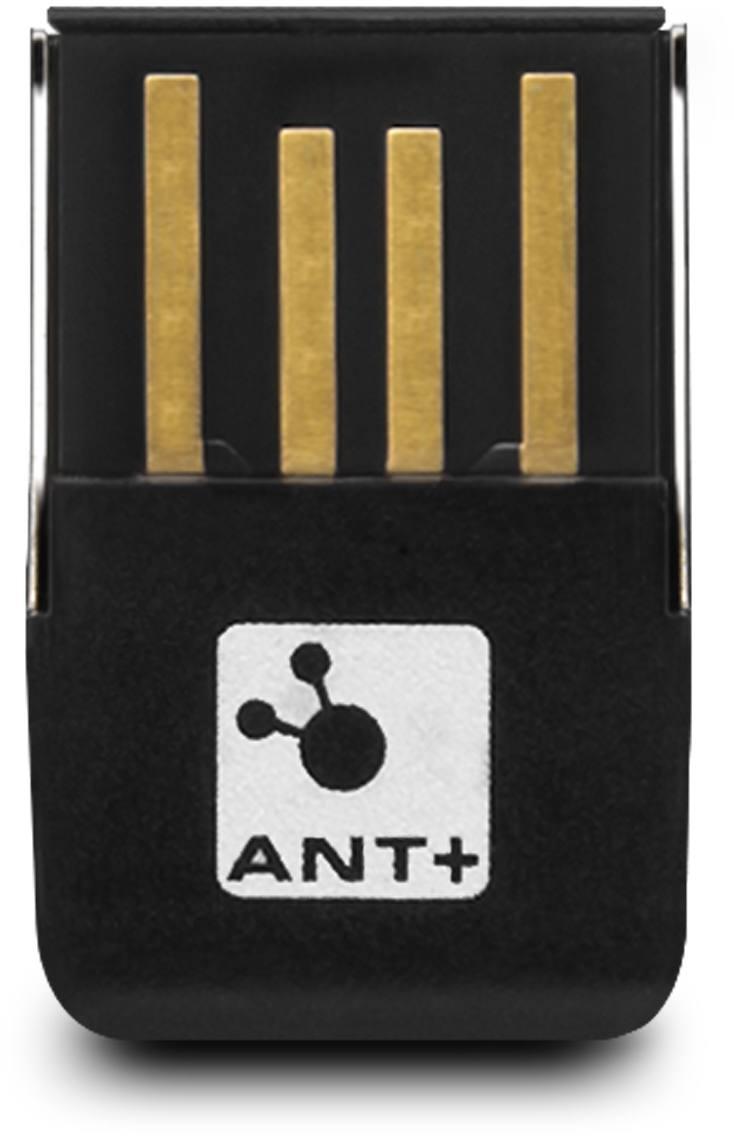 Ant Stick