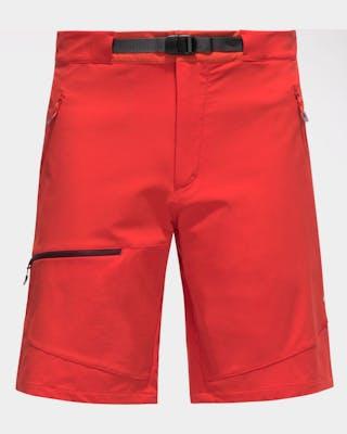 Lizard Shorts